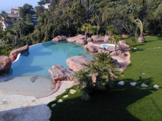 Construction de bassin naturel de jardin - piscine naturelle - Nice - Cannes - Antibes