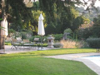 Pose de gazon et création de jardin - Exo jardins