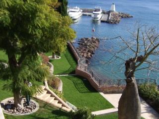 Aménagement paysager - création de jardin Alpes-Maritimes - Exo Jardins