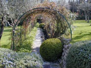 Exo Jardins : votre jardinier-paysagiste à Théoule-sur-Mer et Le Cannet