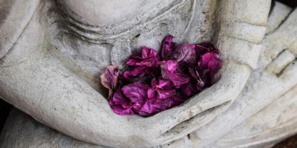 Comment créer un jardin minéral et zen ?
