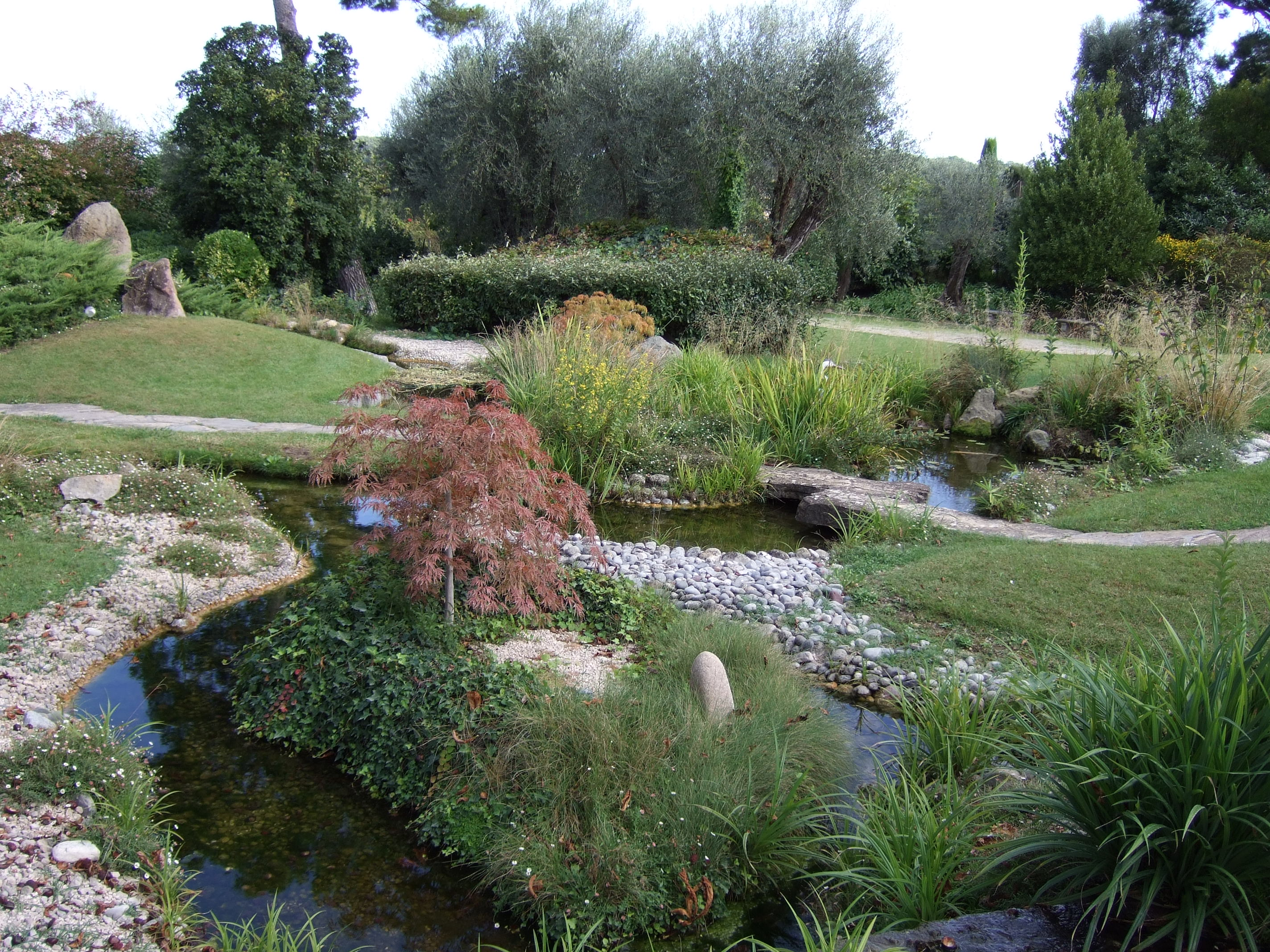 Cr ation de bassin d 39 tang cannes 06 antibes valbonne for Creation de jardin exterieur