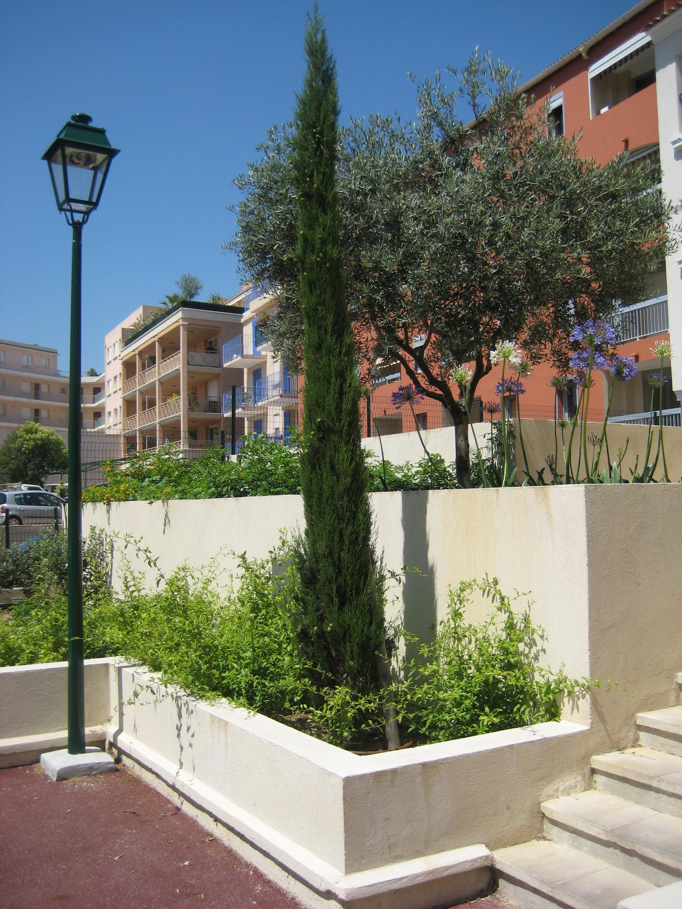 Eclairage jardin Paysagiste Cannes 06 Antibes Théoule sur Mer