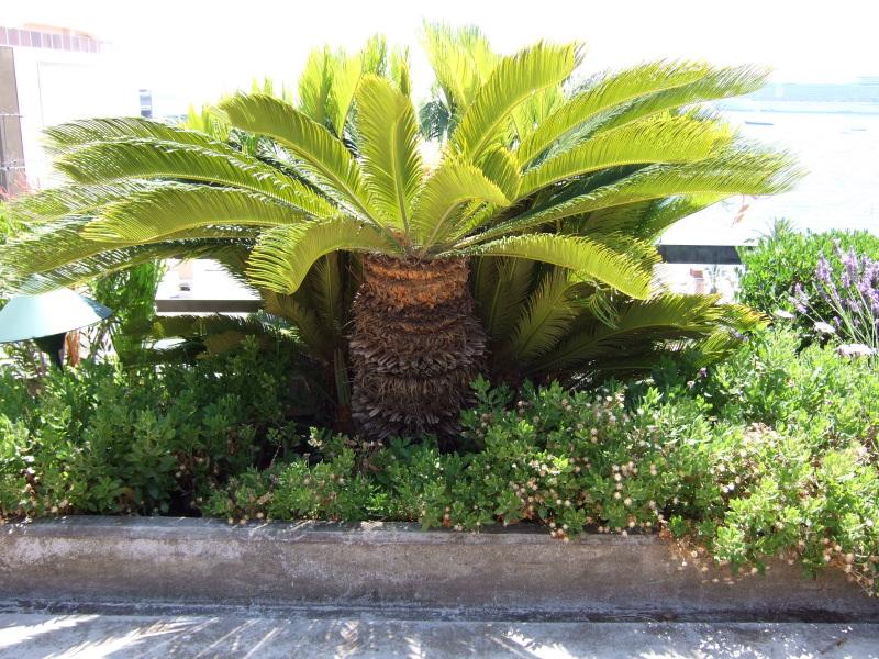 Mobilier de jardin en palette aixen provence maison - Mobilier de jardin en palette aixen provence ...