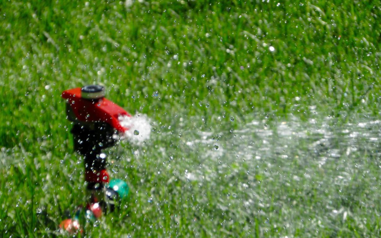 Pose d'arrosage automatique - Irrigation jardin - Exo Jardins - Alpes Maritimes et Var