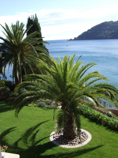 Aménagement paysager - Création de jardin dans les Alpes Maritimes (06) - Exo Jardins